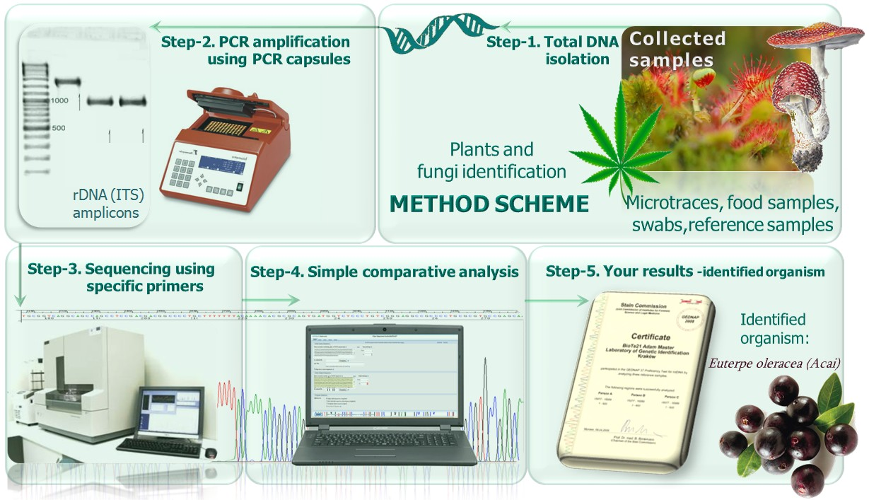 ITStest-plant & fungi - method scheme